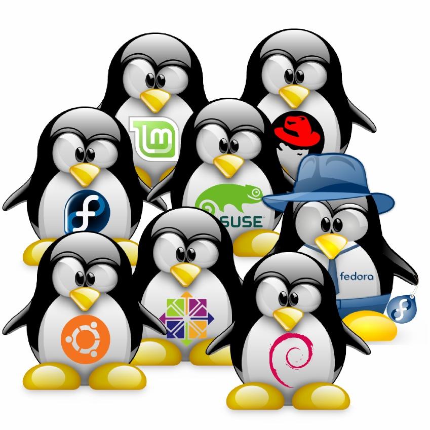 Programmi utili per Linux. Ecco quali.